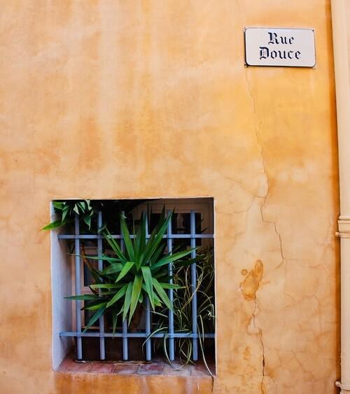 Mur extérieur donnant sur rue avec plantes vivaces
