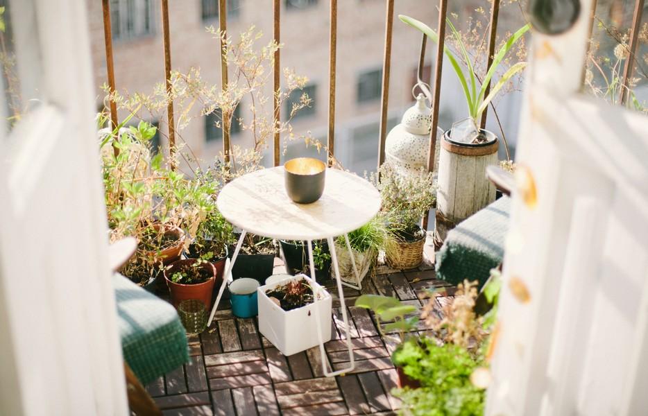 balcon arboré
