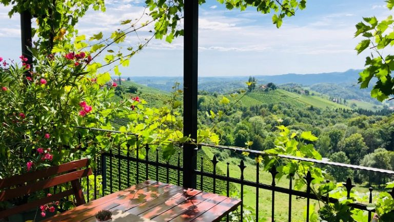 terrasse végétalisée